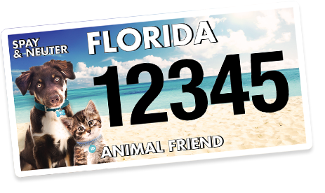 Florida Animal Friend Awards ACT Grant